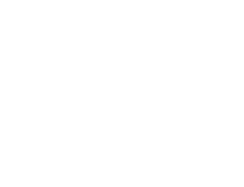 Northern Bear Roofing